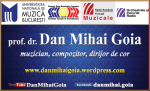BUSINESS CARD - DAN MIHAI GOIA 1